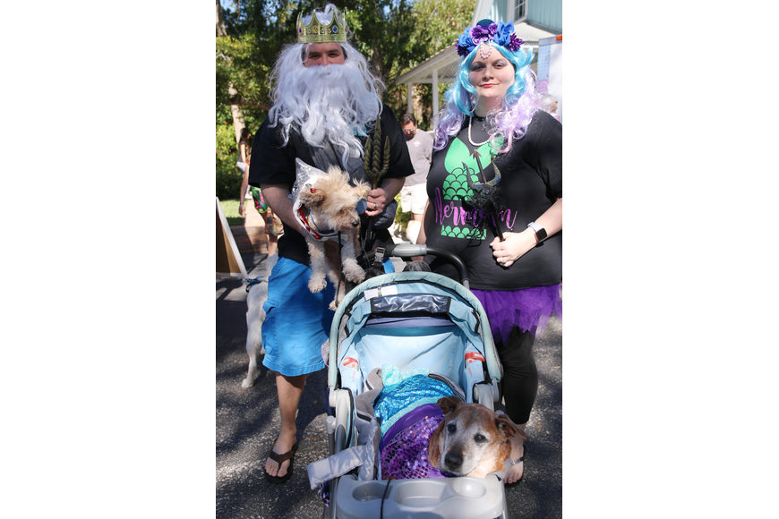Jon and Cassandra Jacob, of DeLand, make sure to 'seas the day' with their pups Coco and Ibis at OMAM's Dogapalooza 2020 on Saturday, Jan. 25. Photo by Jarleene Almenas