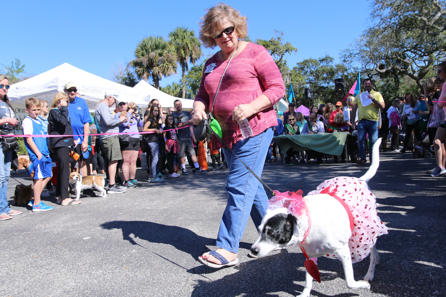 Debra Kreuscher, of Ormond Beach, and Lucy participate in the costume parade at OMAM's Dogapalooza 2020 on Saturday, Jan. 25. Photo by Jarleene Almenas