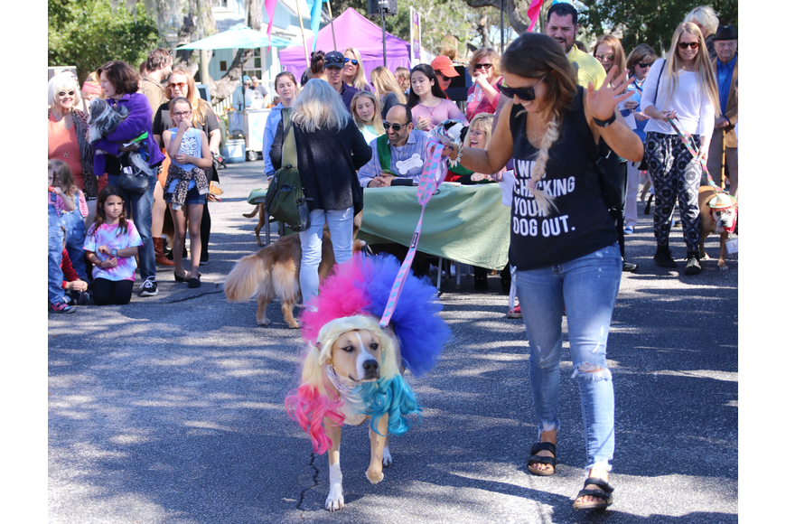 Shannon Tyler, of New Smyrna Beach, and Lola, participate in the costume contest at OMAM's Dogapalooza 2020 on Saturday, Jan. 25. Photo by Jarleene Almenas