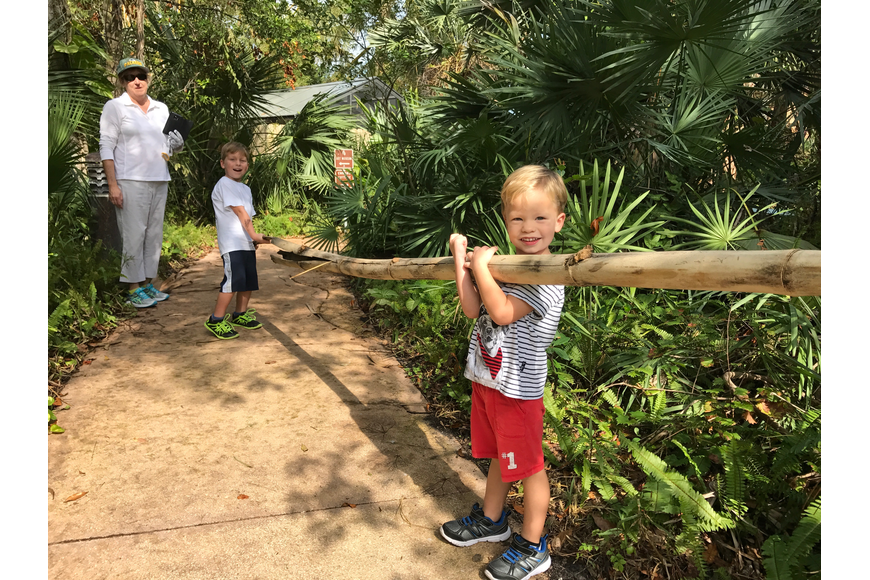 Susan Richmond watches 5-year-old Noah Gillikin and 3-year-old Colin Gillikan move a large branch.